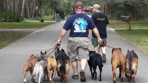 Glenn Sherrill, making his dreams come true one dog at a time, or in this case, seven at a time.
