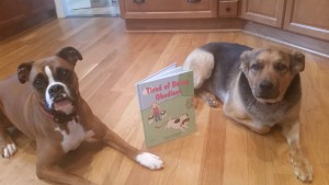 Kaner and Rocko know a good book when they see one.